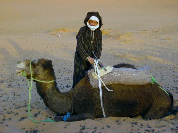 Sahara-Camel-Trainer