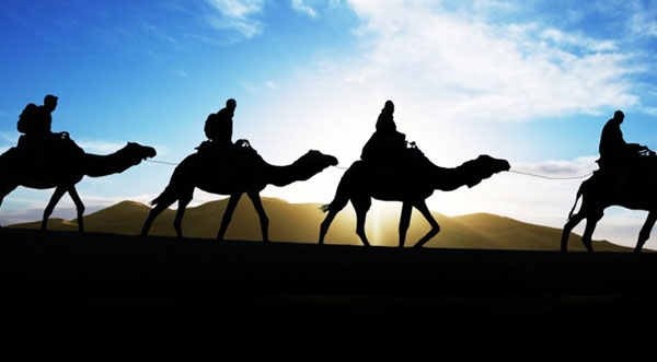 Discover the vastness of the beautiful desert on camel back